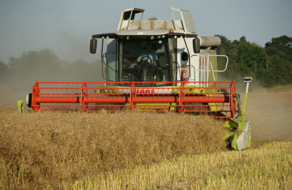 Harvest '21 Yields to date… image