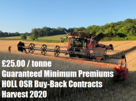 £25.00/tonne Guaranteed Minimum Premiums with Innovative New HOLL Contracts for 2020 image