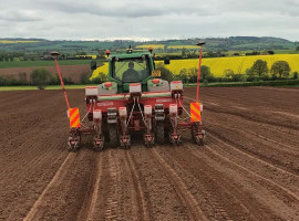 11 Maize varieties drilled for Hubbards Seeds Trials image