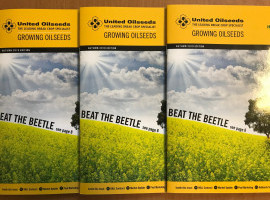 Growing Oilseeds Autumn Edition image