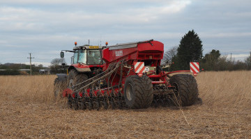Break Crop Markets Update