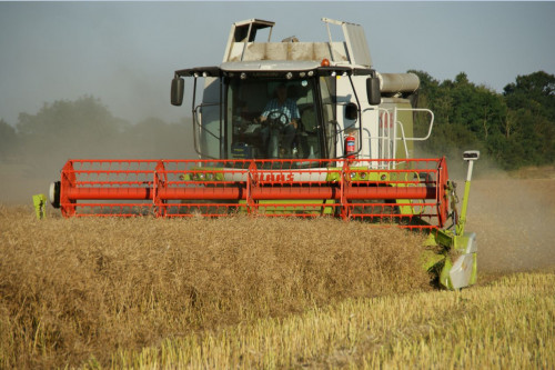 Harvest '21 Yields to date…